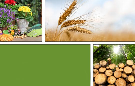 Pesticides in the UK: The 2016 report on the impacts and sustainable use of pesticides