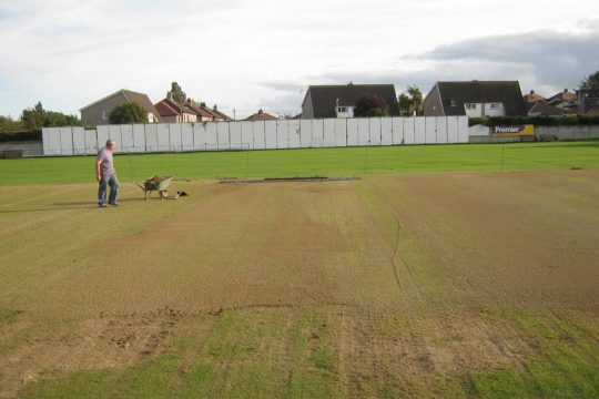 Cricket renovation (only cheaper)