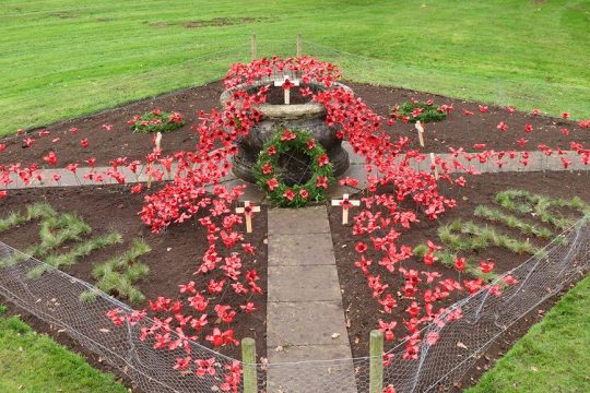 Brooksby Melton College Students Create a Poppy Display with a Twist